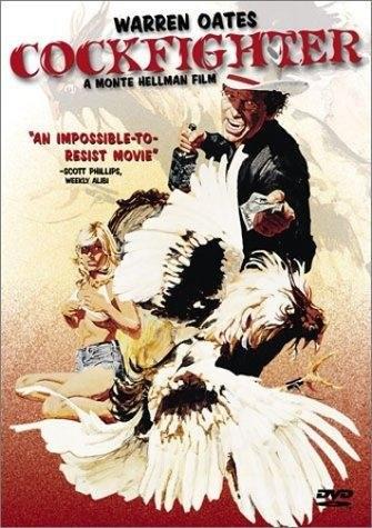 Cockfighter (1974) starring Warren Oates on DVD on DVD