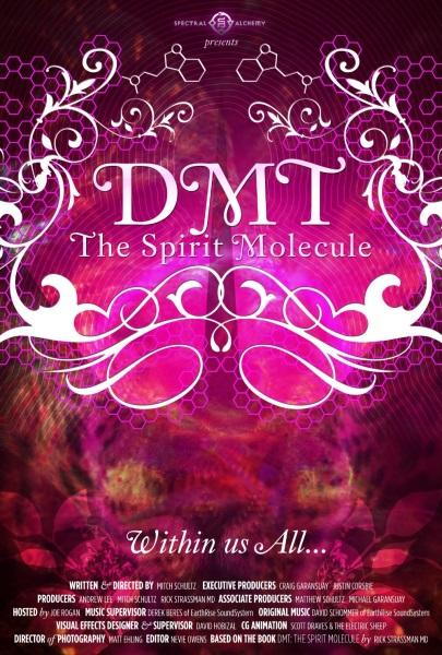 DMT: The Spirit Molecule (2010) starring Joe Rogan on DVD on DVD