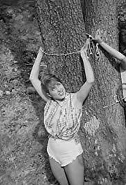 Mondo oscenità (1966) starring Joel Holt on DVD on DVD