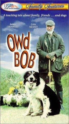 Owd Bob (1998) with English Subtitles on DVD on DVD