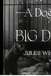 The Big Dog House (1931) starring N/A on DVD on DVD