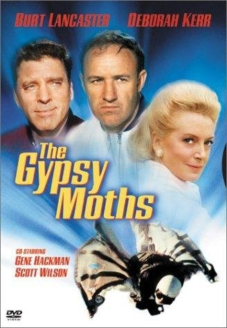 The Gypsy Moths (1969) starring Burt Lancaster on DVD on DVD