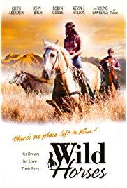 Westerns on DVD