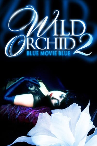 Wild Orchid II: Two Shades of Blue (1991) starring Nina Siemaszko on DVD on DVD