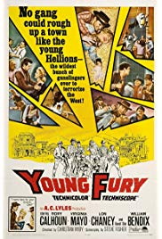 Young Fury (1964) starring Rory Calhoun on DVD on DVD