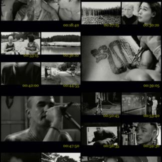 Oi! Warning (1999) DVD