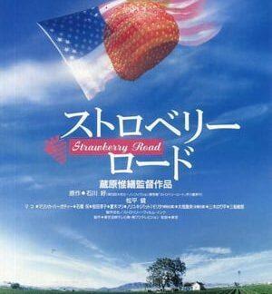 Strawberry Road (1991) DVD